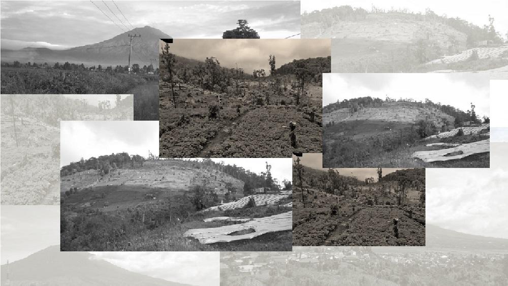Deforestasi Gunung Kerinci